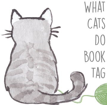 Image result for What cats do book tag